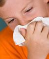 gripe resumo