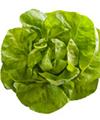 Não se esqueça das saladas