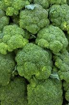 Número de calorias brócolis