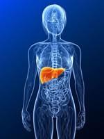 As hepatites virais causam um milhão de mortes por ano