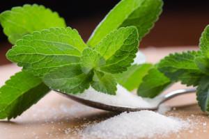 stevia-criasaude