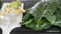 Suco verde ingredientes