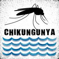 Chikungunya-water-big