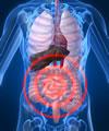 Resumo apendicite