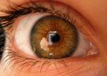 Resumo degeneração macular relacionada à idade