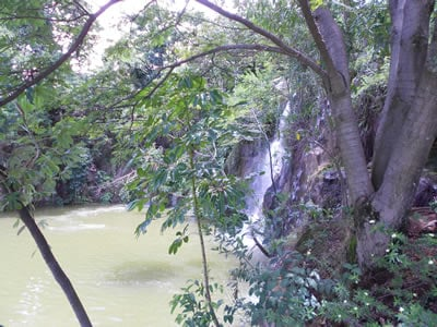 Site do Jardim Botânico de Jundiaí