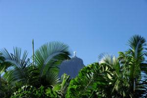 jardin-botanique-rio-fotolia-2016