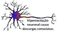 Sintomas epilepsia
