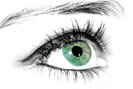 Olhos secos resumo